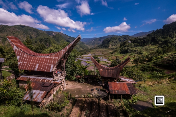 Indonesia-Toraja-Baruppo-Ricefields-42