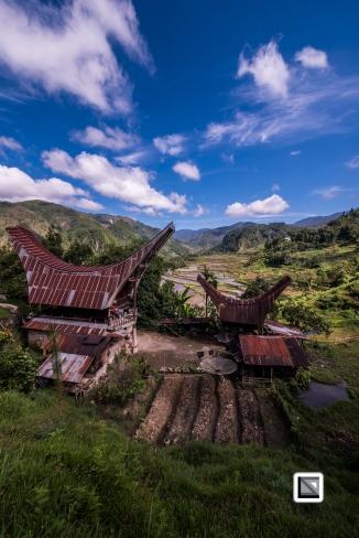 Indonesia-Toraja-Baruppo-Ricefields-43
