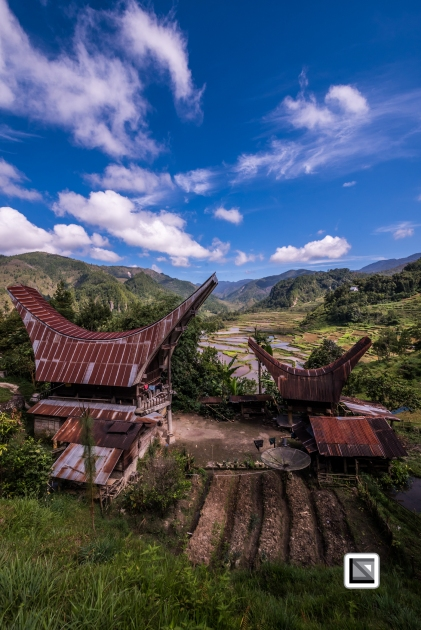 Indonesia-Toraja-Baruppo-Ricefields-45
