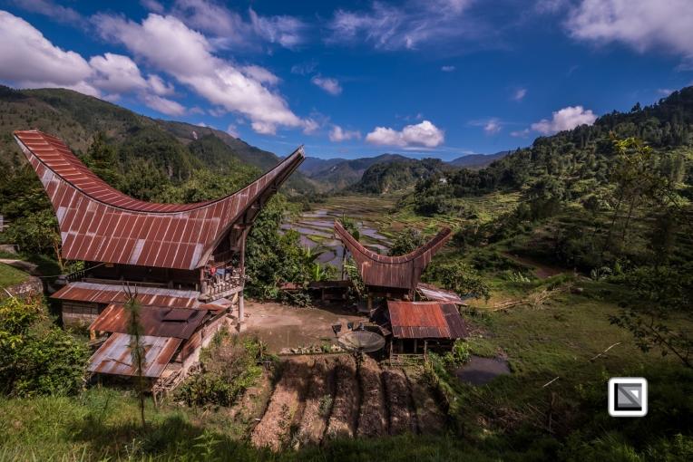 Indonesia-Toraja-Baruppo-Ricefields-46