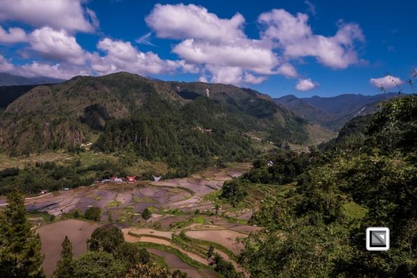 Indonesia-Toraja-Baruppo-Ricefields-65
