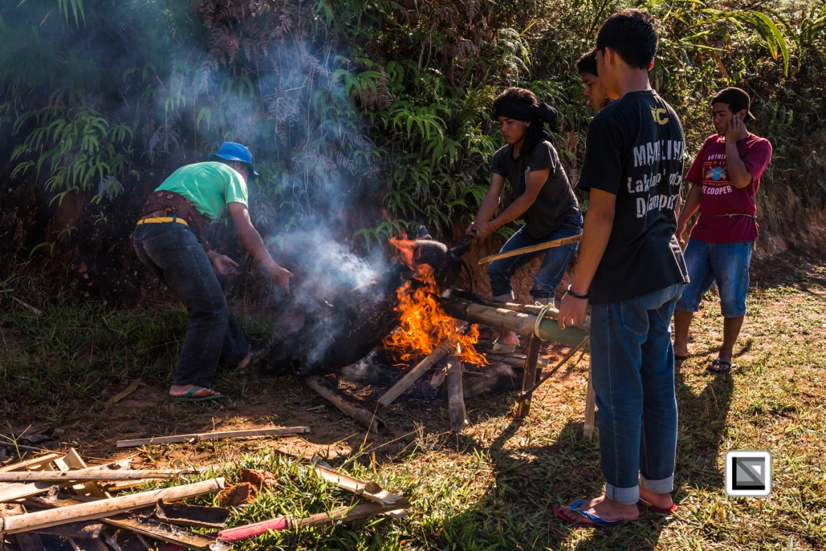 Indonesia-Toraja-Panggala_Manene-387