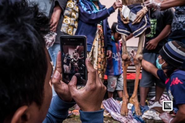 Indonesia-Toraja-Panggala_Manene-Allo_Pongsitammu-28
