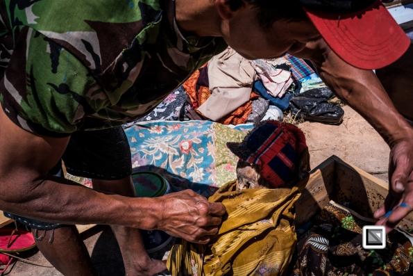 Indonesia-Toraja-Panggala_Manene-nameless_male_baby-11