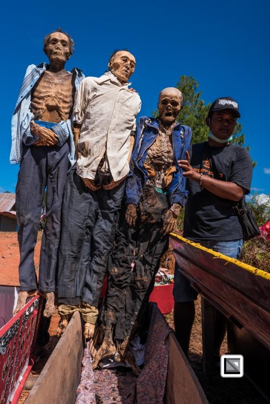 Indonesia-Toraja-Panggala_Manene-Todeng_2009_and_Tandi_2000_and_Songa_1997-19