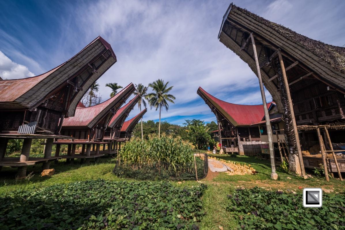 Indonesia-Toraja-Sangalla-Tongkonan-Landscape-10