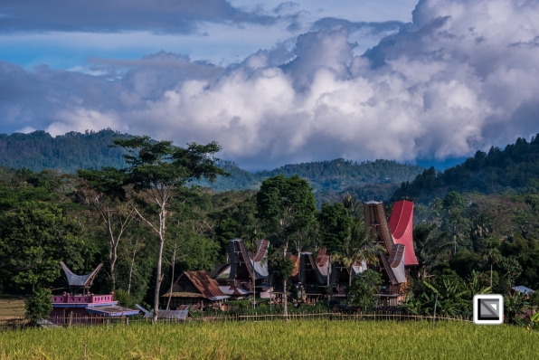 Indonesia-Toraja-Sangalla-Tongkonan-Landscape-26