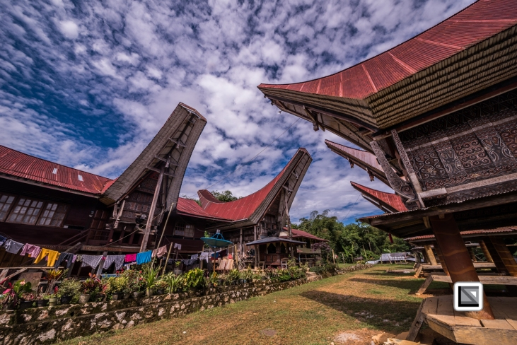 Indonesia-Toraja-Tongkonan_House-2