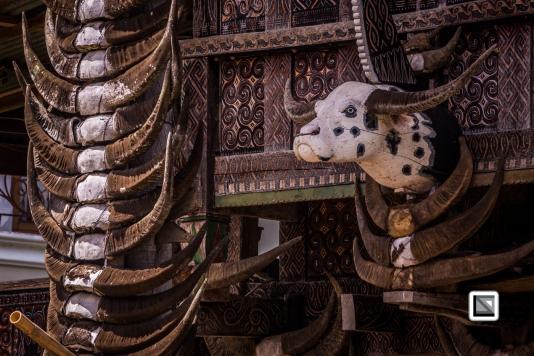 Indonesia-Toraja-Tongkonan_House-28