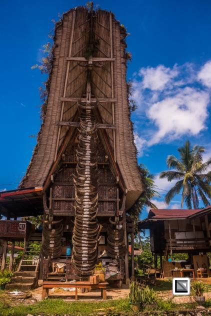 Indonesia-Toraja-Tongkonan_House-53