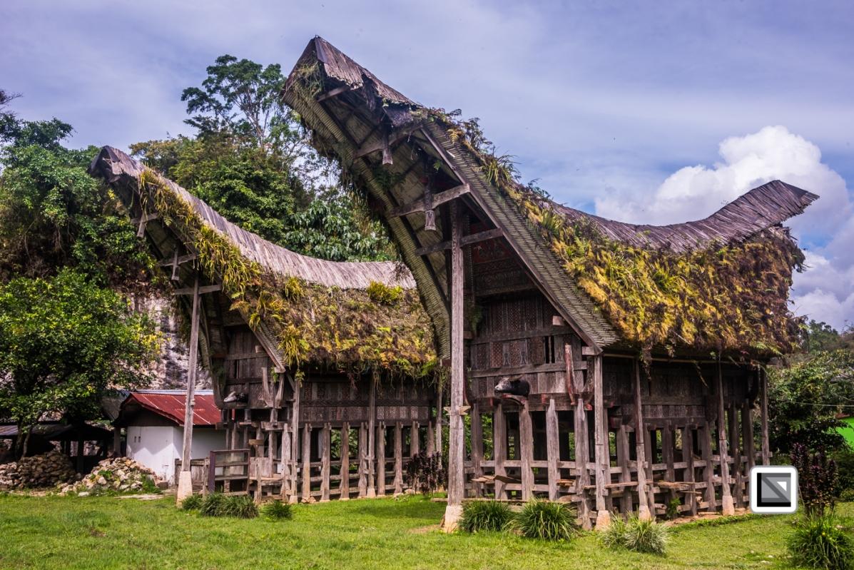 Indonesia-Toraja-Tongkonan_House-59