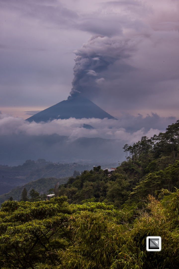 Indonesia-Bali-147