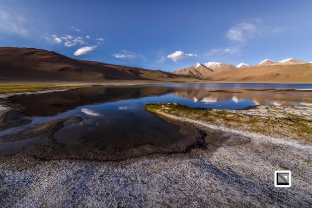 Ladakh-273