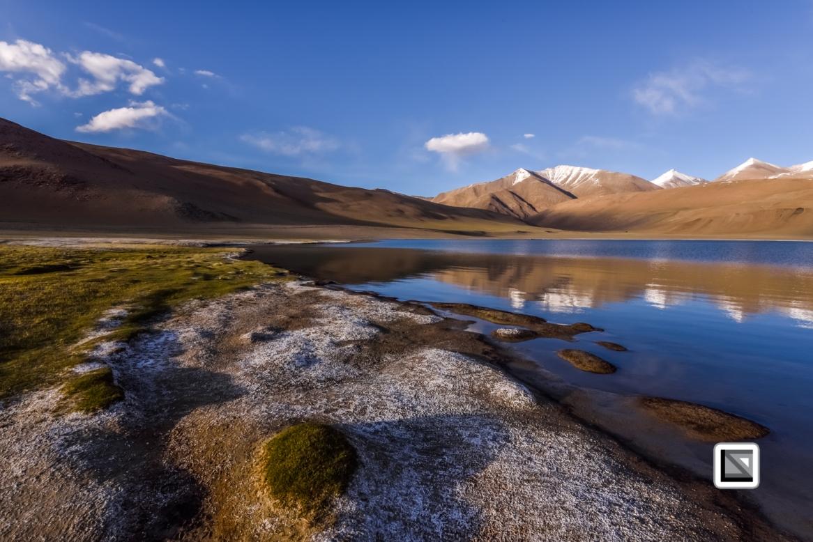 Ladakh-281