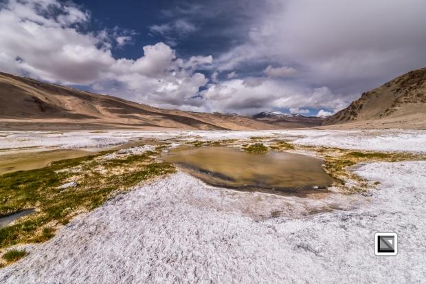 Ladakh-397