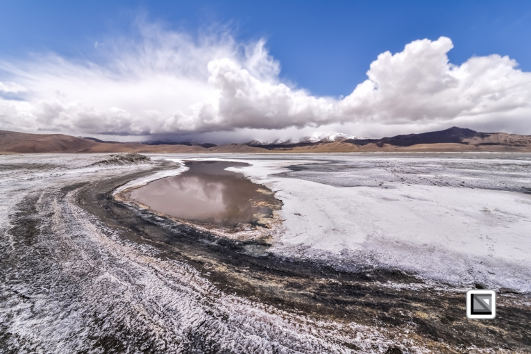 Ladakh-469