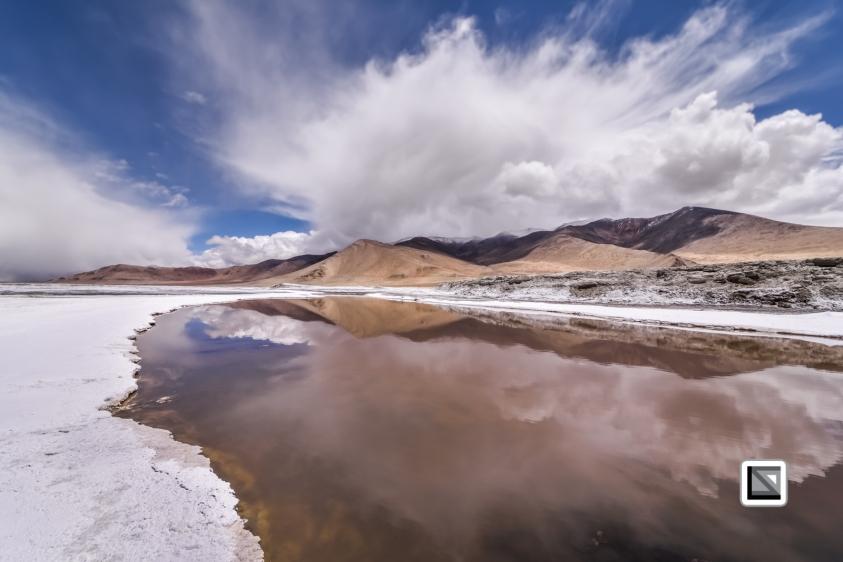 Ladakh-491