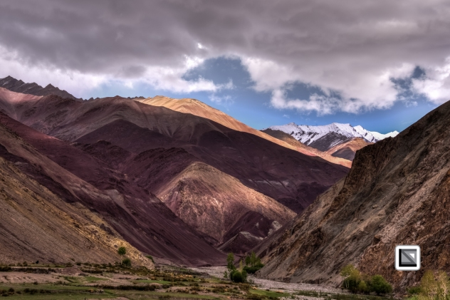Ladakh-664