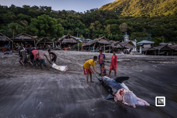 Indonesia-Lembata-Lamalera-104