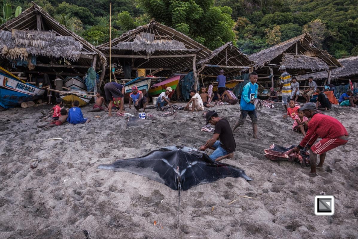 Indonesia-Lembata-Lamalera-108