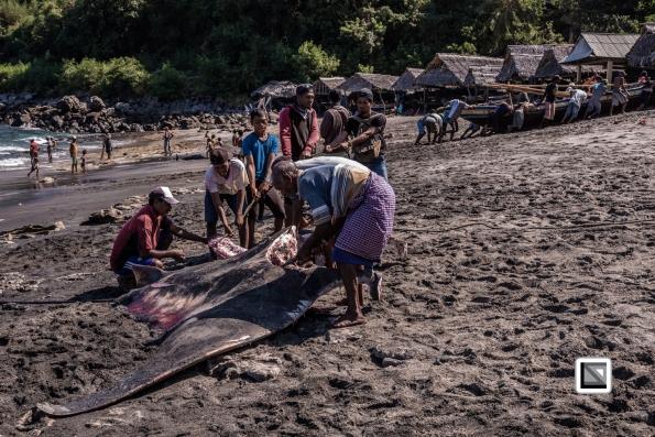 Indonesia-Lembata-Lamalera-195
