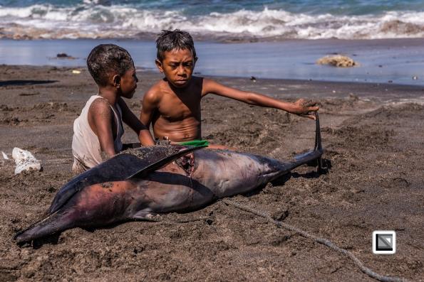 Indonesia-Lembata-Lamalera-203