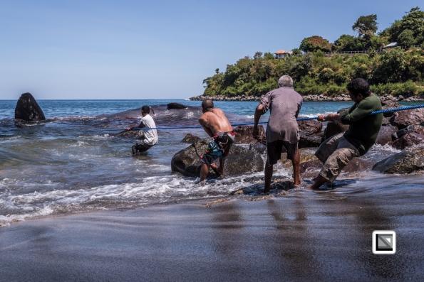 Indonesia-Lembata-Lamalera-446