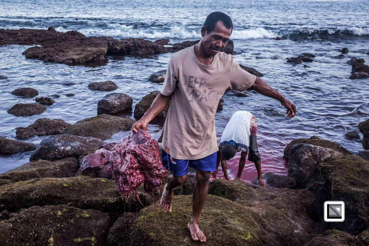 Indonesia-Lembata-Lamalera-564