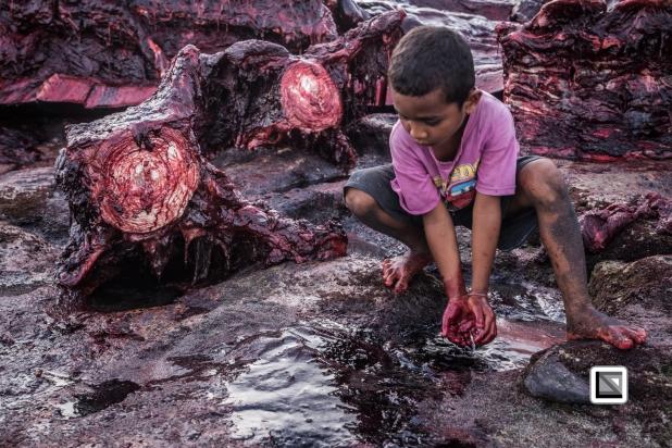 Indonesia-Lembata-Lamalera-601