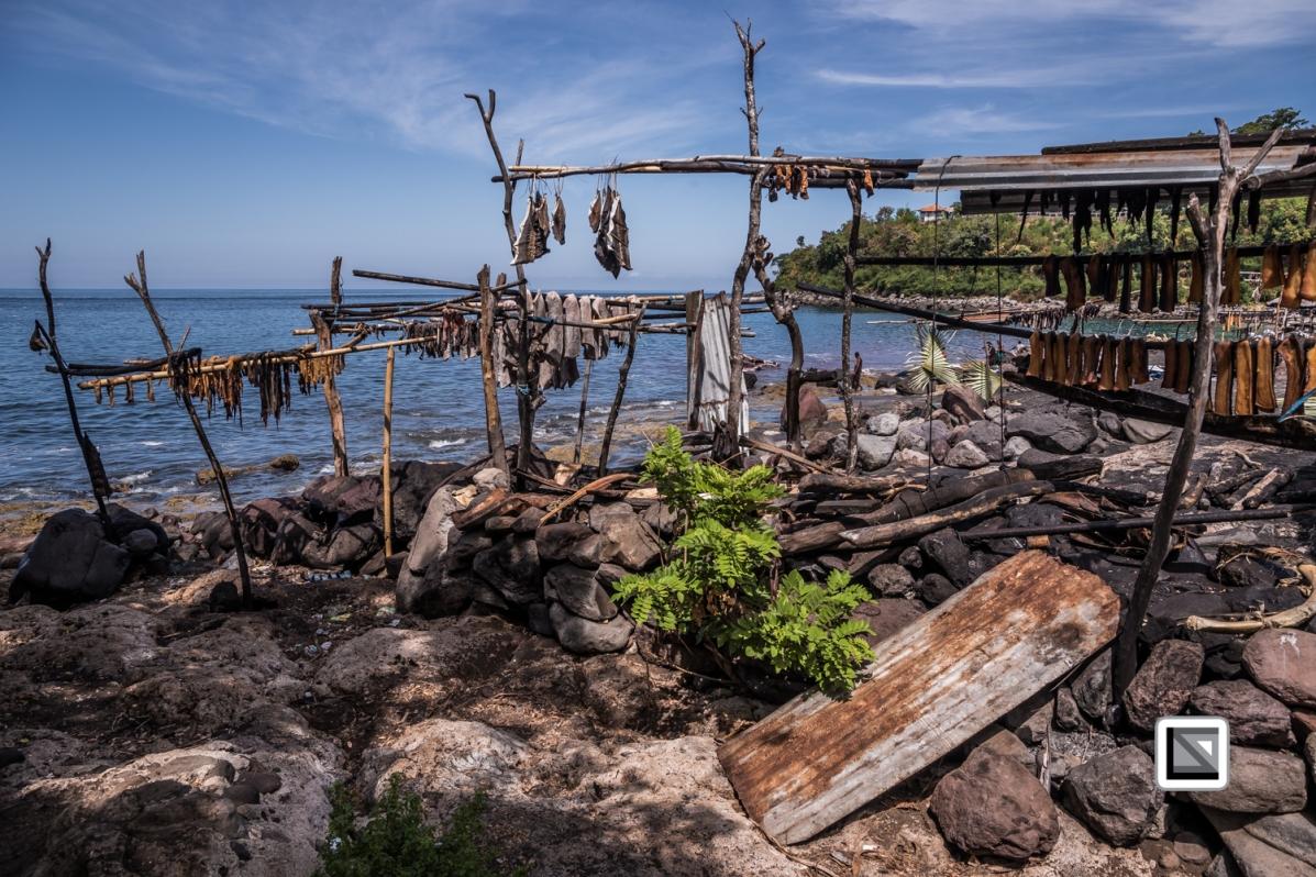 Indonesia-Lembata-Lamalera-632