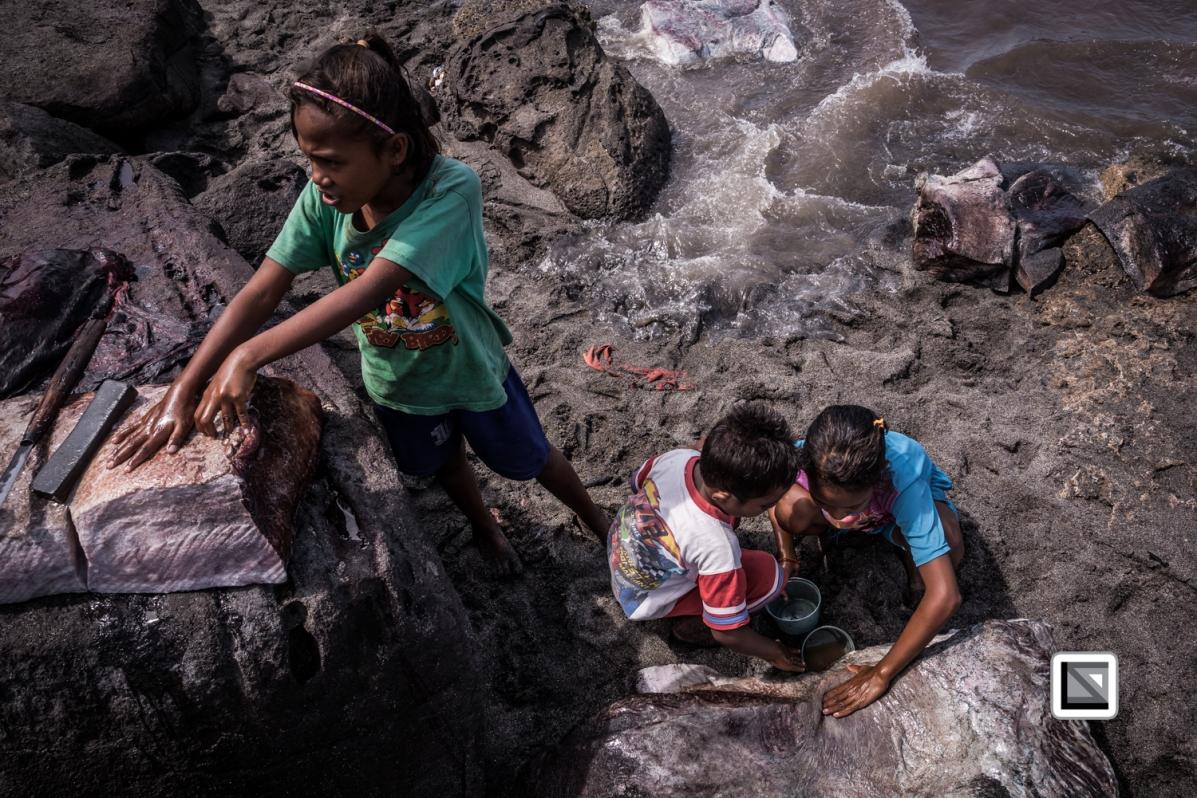 Indonesia-Lembata-Lamalera-647