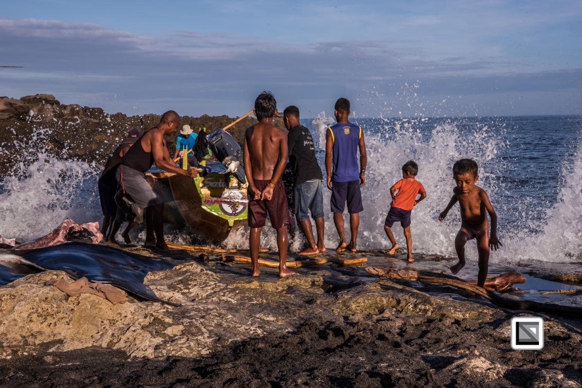 Indonesia-Lembata-Lamalera-81