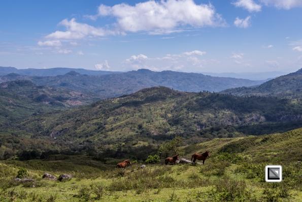 Timor-Leste-162