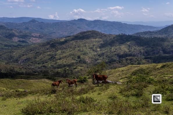 Timor-Leste-164