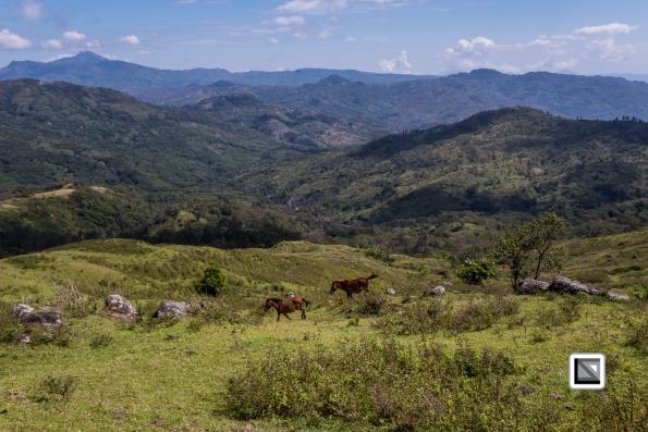 Timor-Leste-167