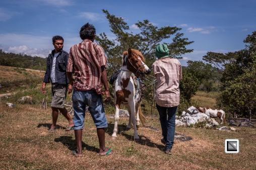 Timor-Leste-24