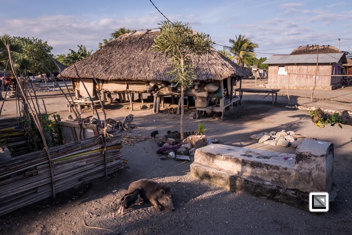 Timor-Leste-261