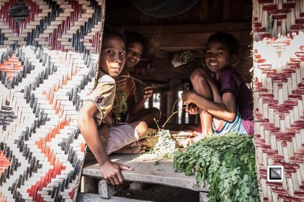 Timor-Leste-298