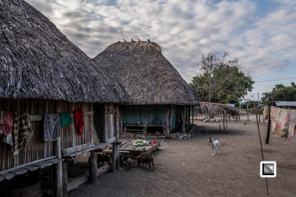Timor-Leste-307