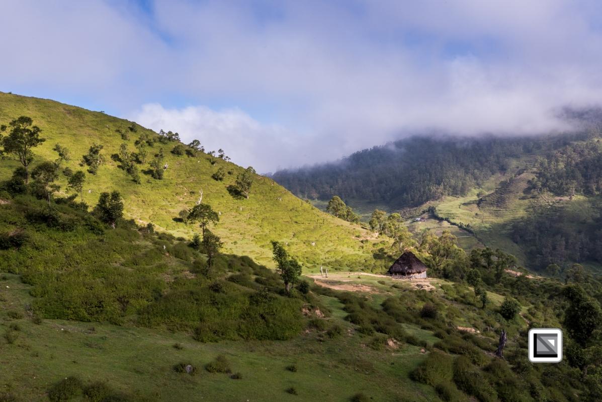 Timor-Leste-335