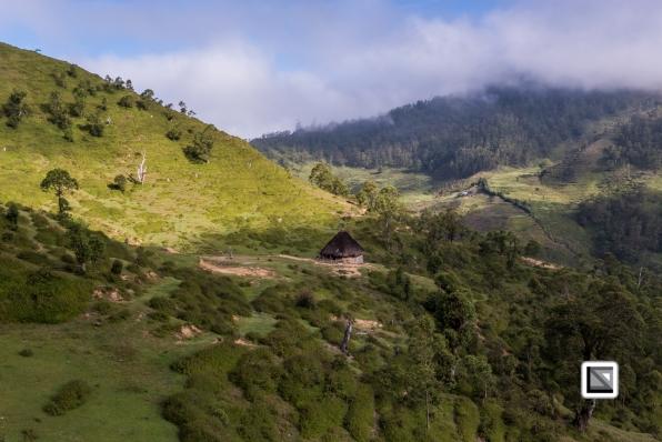 Timor-Leste-338