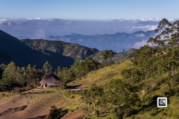 Timor-Leste-342