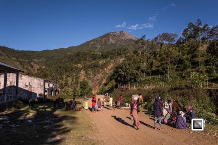Timor-Leste-421
