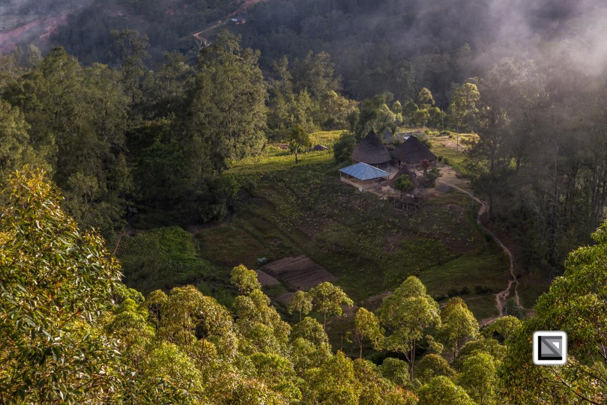 Timor-Leste-487