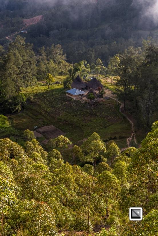 Timor-Leste-488