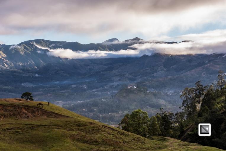 Timor-Leste-497