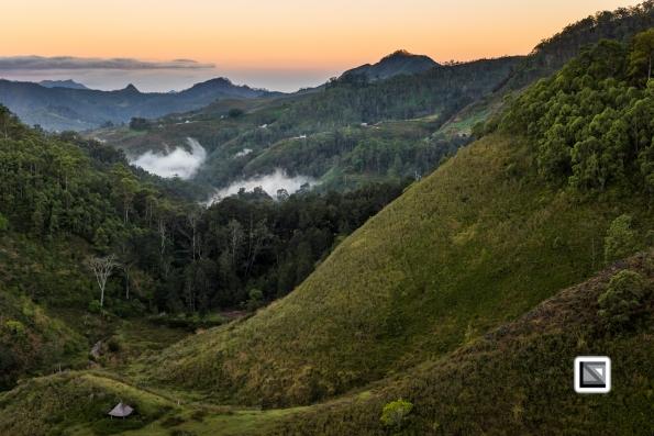 Timor-Leste-501