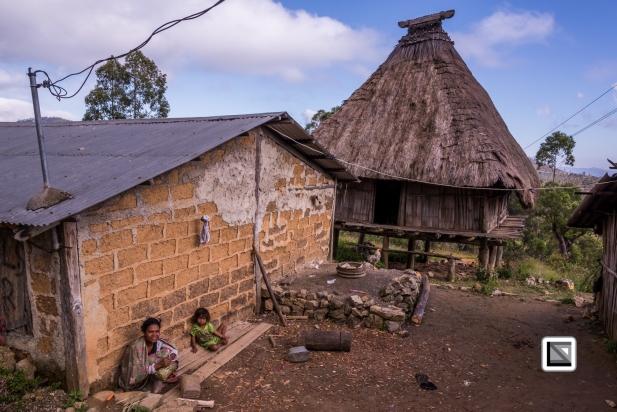 Timor-Leste-518