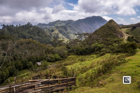 Timor-Leste-535