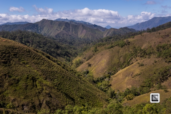 Timor-Leste-589